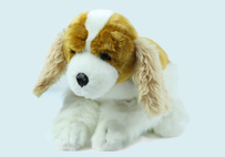 Brown White Toy Dog