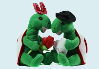Valentine Couple turtle Toy